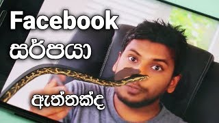 Snake on Screen or Snake on Facebook ?