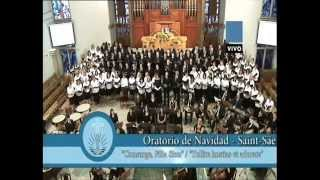 preview picture of video 'Concierto de adviento 14/12/2014 Iglesia Nueva Apostolica'
