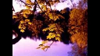 """Осень"" Music Sergey CHEKALIN. ""Autumn"". Beautiful  russian music. 美しいロシアの音楽"