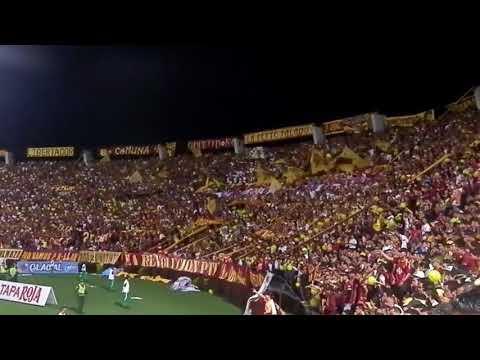 """REVOLUCION VINOTINTO SUR FINAL LIGA ÁGUILA 2018-1"" Barra: Revolución Vinotinto Sur • Club: Tolima"