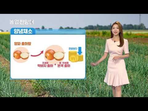 YTN 농업전망대(채소관측 5월) (2019.05.15.) 이미지