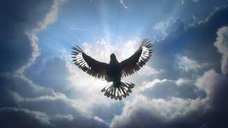 Slippy feat London Thor - Dawn - - - [[Full Visual Trippy Video Set]] - - -  [GetAFix]