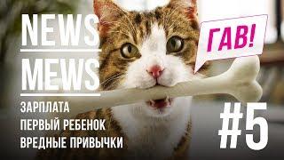 News Mews #5. Что нас ждёт в 2018 году?