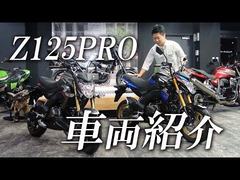 Z125 プロ/カワサキ 125cc 神奈川県 カワサキ プラザ相模原
