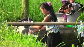 INDONESIA resort Rumah Kita, Kalibaru, Java (hd-video)