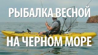 Ловля саргана в марте на черном море