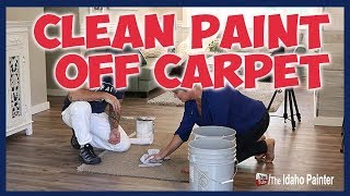 Cleaning Paint Out Of Carpet