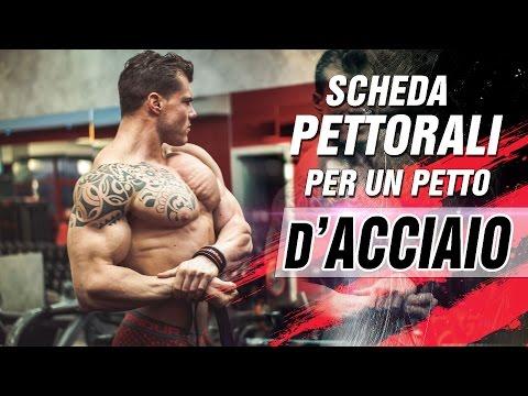 ALLENARE I PETTORALI - Scheda esercizi per il PETTO ▪ Team Commando