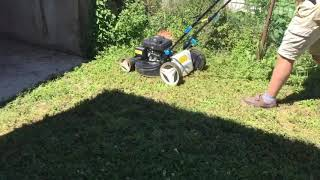 Lawn Mower/How Quick & Easy To Cut The Grass/What Is The Best Time Of The Day To Cut The Grass?/