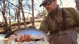 Fly Fishing For TEXAS TROUT - Huge Rainbow Trout on The Guadalupe River