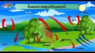 สื่อการเรียนการสอน การหมุนเวียนสาร วัฏจักรของน้ำ และวัฏจักรคาร์บอน ม.3 วิทยาศาสตร์
