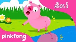 หางหายไป | เพลงสัตว์ | พิ้งฟอง(Pinkfong) เพลงและนิทาน