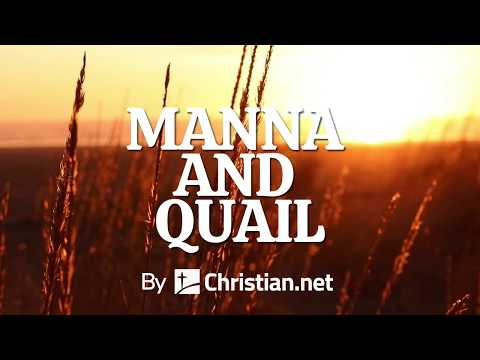 Exodus 16: Manna and Quail | Bible Story (2020)