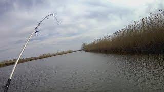 Рыбалка в астрахани тур