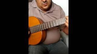 Lulu Santos  Papo Cabeça  Jerrão Cover