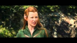 The Hobbit: The Desolation Of Smaug - It Is Our Fight