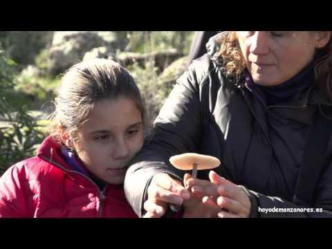 Video promocional de Hoyo de Manzanares
