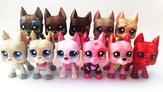 Má sbírka Littlest Pet Shop dog #1
