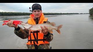 Рыбалка в омской обл на иртыше