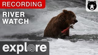 River Watch - Katmai National Park, Alaska powered by EXPLORE.org