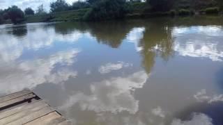 Платная рыбалке в лобне