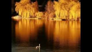 Золотая осень.Очень красивые фото и музыка.