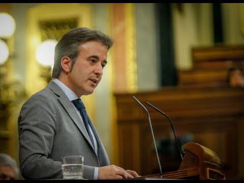Intervención de Diego Movellán en el Pleno del Congreso. 25-03-2020