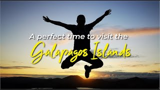 Why is the perfect time to visit Galapagos?