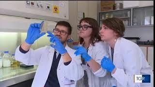 Il Prof. Dino Vaira intervistato su una patologia molto diffusa: la gastrite!