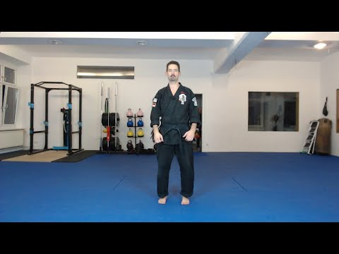 Kenpo Karate - Training at Home