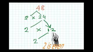 Factor Tree method | Factors and Multiples  For Grade 5 | Part 2