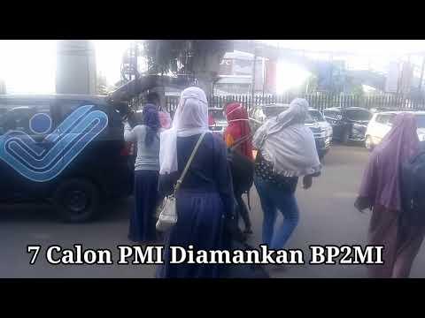Gagalkan Pengiriman 7 CPMI ke Timur Tengah, Kepala BP2MI Bertekad Sikat Mafia Sindikasi
