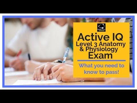 Active IQ Level 3 Anatomy and Physiology Exam - YouTube