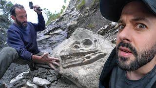 Il a découvert des dinosaures (en France!!)