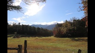 ONE MAN'S DREAM AND THE JOURNEY TO BUILDING A CABIN AND HOMESTEAD IN THE GREAT SMOKY MOUNTAINS