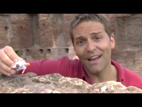 Download Romulus and Remus: The Legendary Origins of Rome Mp4 HD Video and MP3