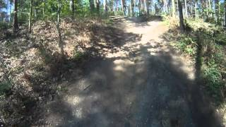 preview picture of video 'Genesis Trail XC Loop Part 1 Bedgebury Mountain Bike Trail Centre Kent'