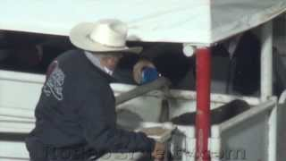 Salinas Rodeo's Abused, Glittering Bulls