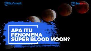 Apa Itu Fenomena Super Blood Moon?