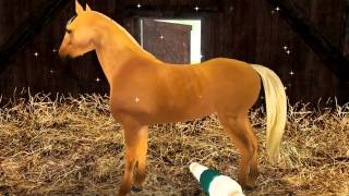 Planet Horse video