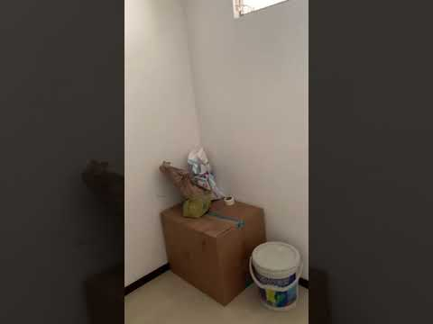 Apartamentos, Venta, Cuarto de Legua - $195.000.000
