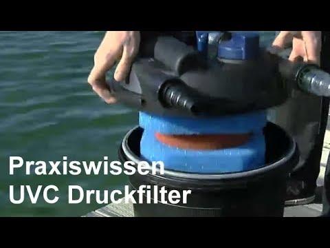 Teichfilter Ratgeber - UVC Druckfilter - Video:Einsatz und Anwendung von Druckfiltern im Gartenteich