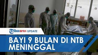 Bayi 9 Bulan Terkonfirmasi Covid-19 Meninggal di NTB, Tambah 25 Kasus Positif Baru