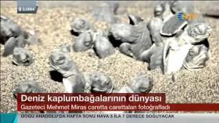 Mehmet Miras, Deniz kaplumbağaları belgeseli