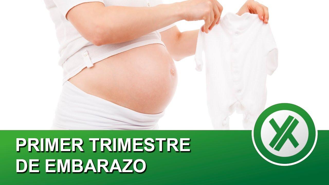 Primer trimestre de embarazo - Qué pasa en el cuerpo y mi experiencia personal