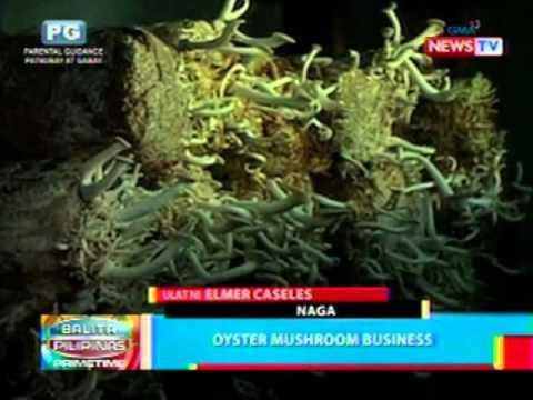 Kuko halamang-singaw paggamot na may gliserol