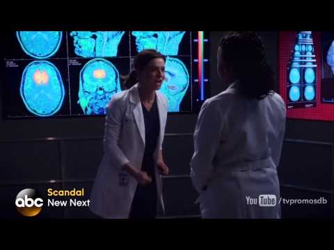Grey's Anatomy 11.13 (Preview)