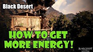 [Black Desert] How to Get More Energy!   Guide / Walkthrough
