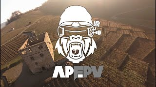Cinematic FPV flight over little german castle with great view on vineyards