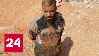 Сирийские военные захватили группу боевиков - Россия 24